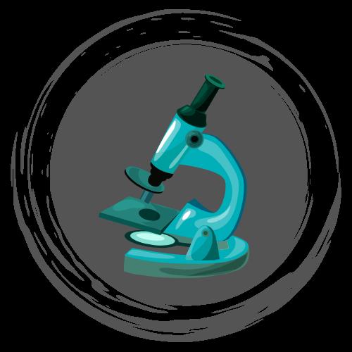 Microscope - Beginner Guide